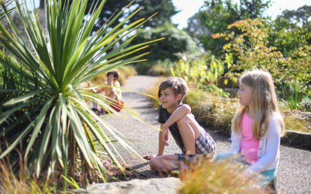 TTWAK, South Africa, Rock Garden. Credit Ines Stuart Davidson, Kew