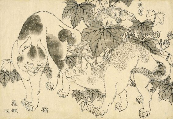 Cats and hibiscus, Katsushika Hokusai, 1829. © The Trustees of the British Museum
