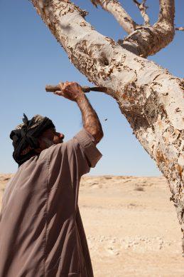 Per gentile concessione del National Museum of Oman. Credits Ahmed al Toqi
