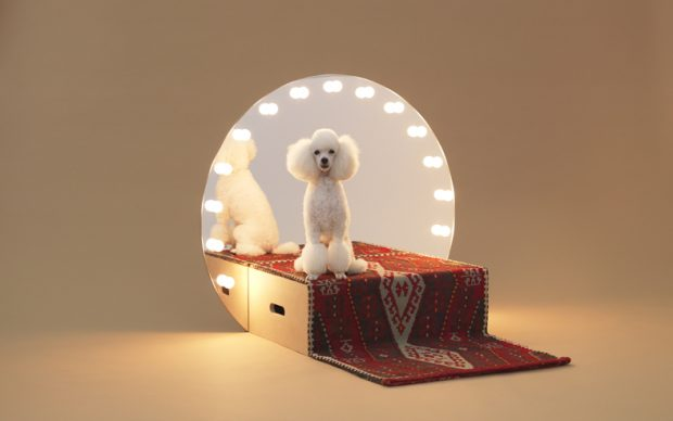 Paramount by Konstantin Grcic for Toy Poodle. Photo Hiroshi Yoda
