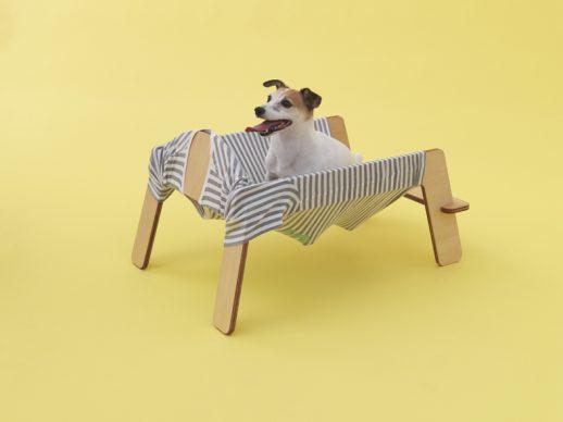 Wanmock by Torafu Architects for Jack Russell Terrier. Photo Hiroshi Yoda