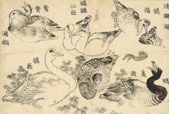 Water birds, Katsushika Hokusai, 1829. © The Trustees of the British Museum