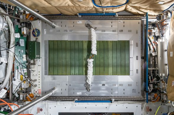 © Paolo Nespoli. Combined Operational Load-Bearing External Resistance Treadmill – C.O.L.B.E.R.T. Node 3 – Tranquility International Space Station – ISS. Low Earth Orbit, Space