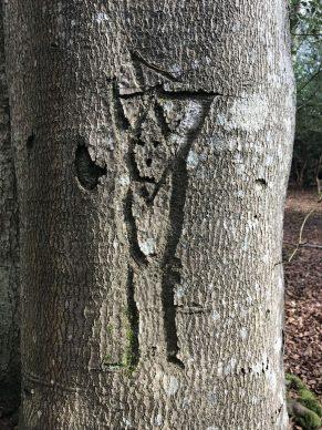 Graffiti man. Courtesy New Forest National Park Authority