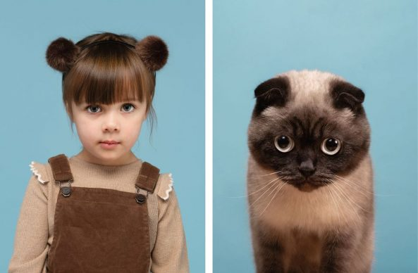 Nancy & Buttons (Scottish Fold). Copyright and courtesy of Gerrard Gethings