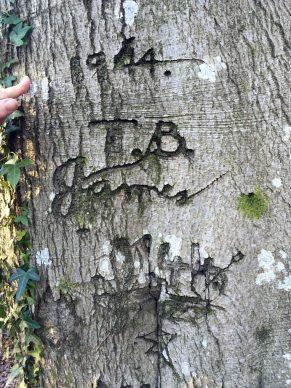 World War 2 graffiti. Courtesy New Forest National Park Authority