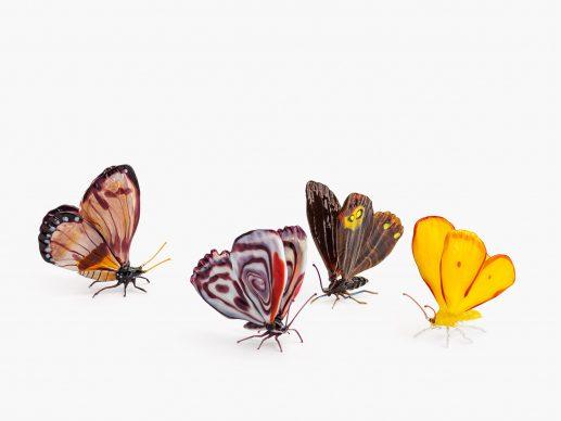 Farfalle di Bruno Amadi, anni ottanta. Courtesy LE STANZE DEL VETRO