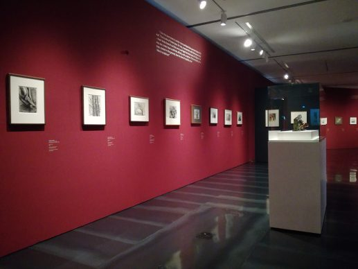 Henry Moore. Il disegno dello scultore. Vista dell'allestimento della mostra al Museo Novecento di Firenze.  Photo Valentina Silvestrini