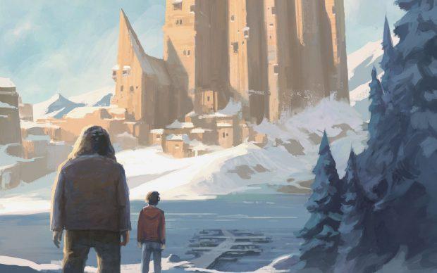 J.K. Rowling. Harry Potter e la pietra filosofale. La copertina di Michele De Lucchi (Salani Editore). Dettaglio