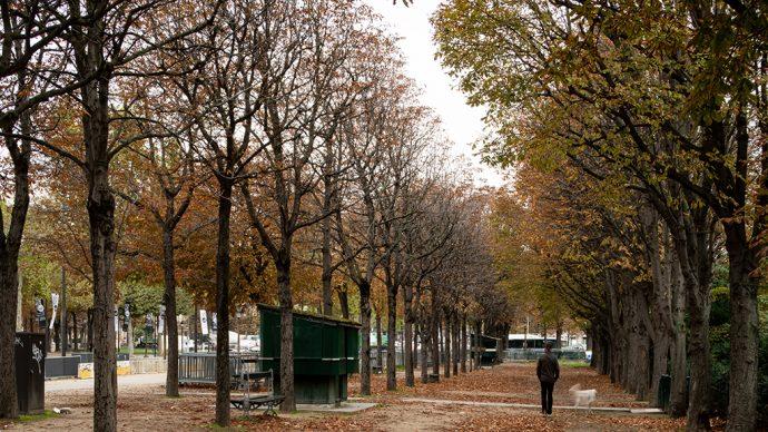 Jardin des Champs Élysées contre allée avant ©Salem Mostefaoui