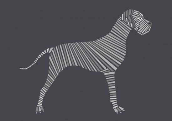 Una illustrazione di Naomi Turco tratta dal libro Fifty dogs with graphic lines, pubblicato da Ost-design, 2020