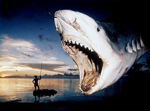 Folco Quilici, Isole Tuamotu, Rangiroa Cattura di squalo tigre, 1961. Folco Quilici © Archivi Alinari