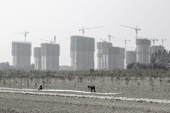 Contadine al lavoro a Zhongmu, 2019, Zhengzhou, provincia dello Henan. Foto di Samuele Pellecchia