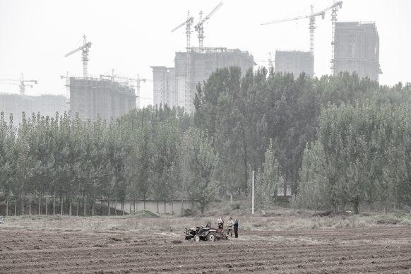 Cantiere a ovest di Kaifeng alle spalle di contadini al lavoro, 2019, Kaifeng, Provincia dello Henan. Foto di Samuele Pellecchia