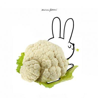 Coniglio-cavolfiore. Una illustrazione di Marianna Balducci. Courtesy l'artista