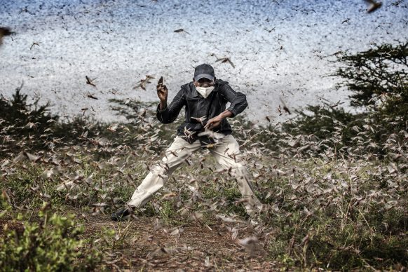 World Press Photo of the Year, nominee: Fighting Locust Invasion in East Africa © Luis Tato, Spain, for The Washington Post