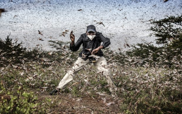 World Press Photo of the Year, nominee: Fighting Locust Invasion in East Africa © Luis Tato, Spain, for The Washington Post © Luis Tato, Spain, for The Washington Post