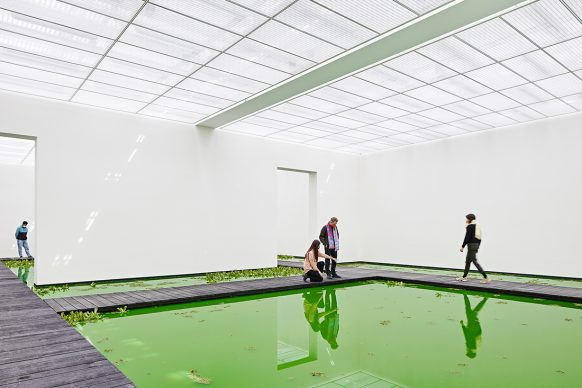 Olafur Eliasson, Life 2021. Installation view: Fondation Beyeler, Riehen/Basel, 2021 Courtesy of the artist; neugerriemschneider, Berlin; Tanya Bonakdar Gallery, New York / Los Angeles © 2021 Olafur Eliasson Photo: Mark Niedermann