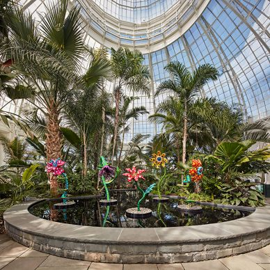My Soul Blooms Forever, 2019, The New York Botanical Garden, Urethane paint on stainless steel, Installation dimensions variable, Collection of the artist. Courtesy of Ota Fine Arts, Victoria Miro, and David Zwirner. Photo by Robert Benson Photography