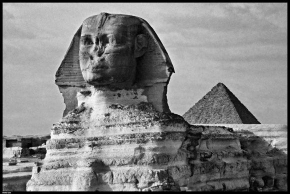 Sfinge, necropoli di Giza, 1980 © Elio Ciol